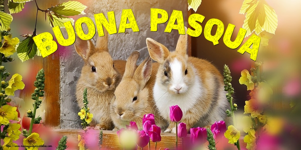 Cartoline di Pasqua - Buona Pasqua - messaggiauguricartoline.com