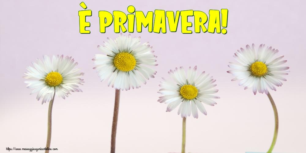 Cartoline di primavera - È Primavera! - messaggiauguricartoline.com