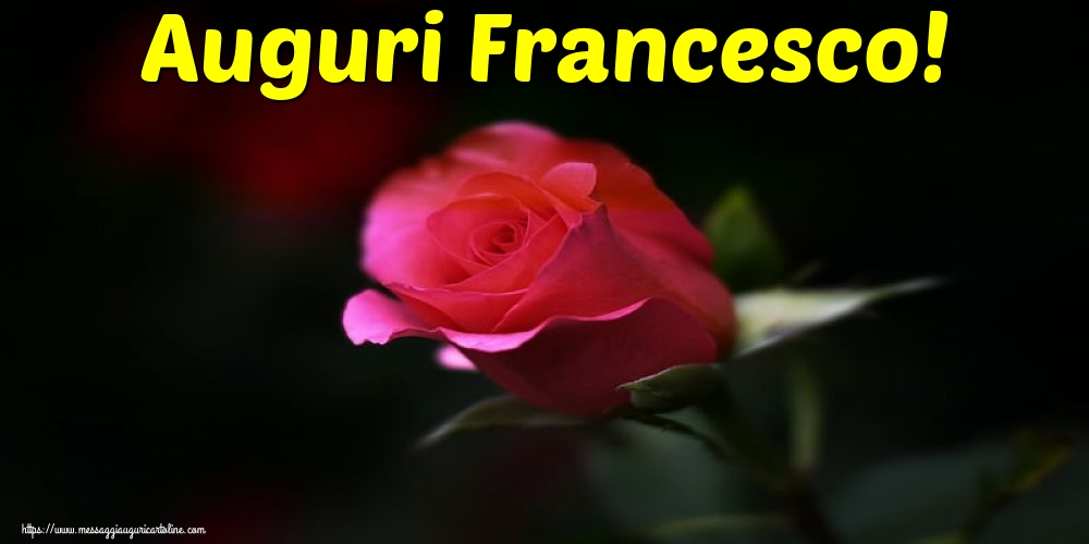 Cartoline di San Francesco con fiori - Auguri Francesco!