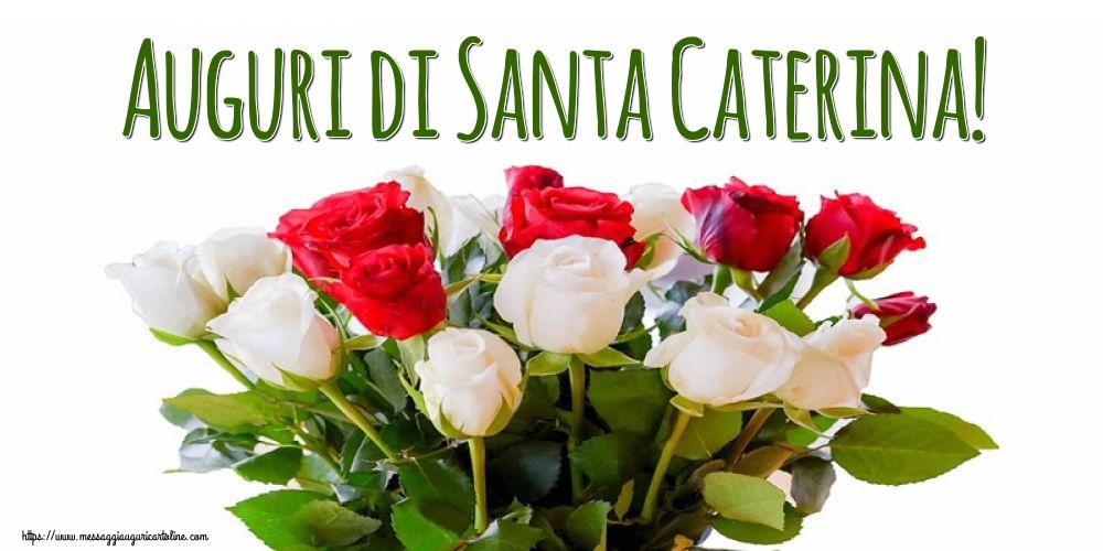 Cartoline di Santa Caterina - Auguri di Santa Caterina!