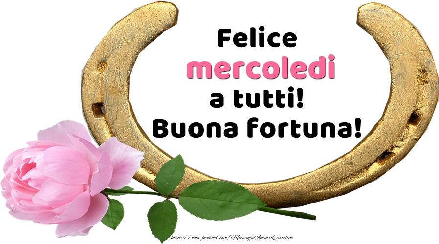 Felice mercoledi a tutti! Buona fortuna!