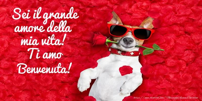 Cartoline d'amore - Sei il grande amore della mia vita! Ti amo Benvenuta!