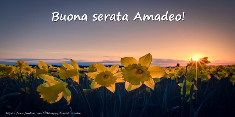 Cartoline di buonasera - Fiori: Buona serata Amadeo!