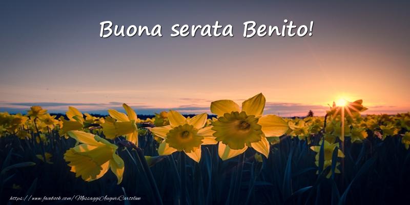 Cartoline di buonasera - Fiori: Buona serata Benito!