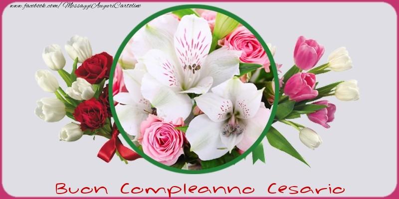 Cartoline di compleanno - Buon compleanno Cesario