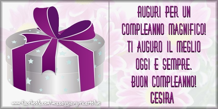 Cartoline di compleanno - Auguri per un compleanno magnifico! Ti auguro il meglio oggi e sempre. Buon Compleanno, Cesira