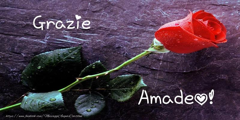 Cartoline di grazie - Grazie Amadeo!