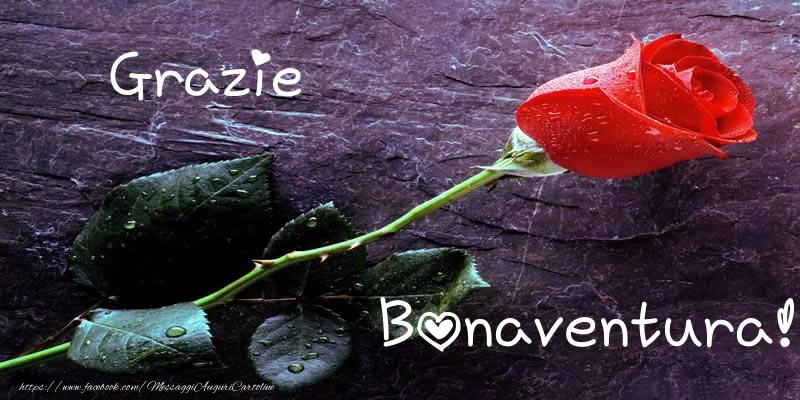 Cartoline di grazie - Grazie Bonaventura!