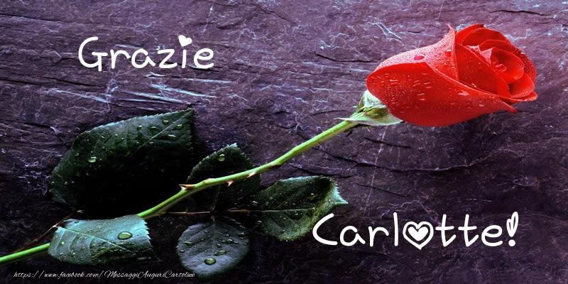 Cartoline di grazie - Grazie Carlotte!