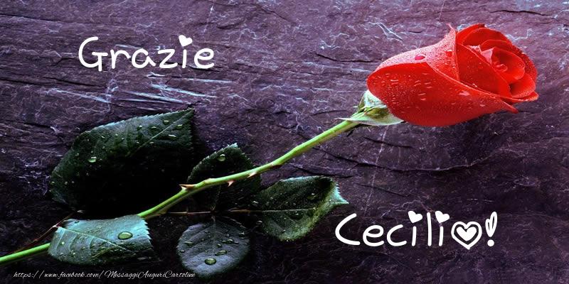 Cartoline di grazie - Grazie Cecilio!