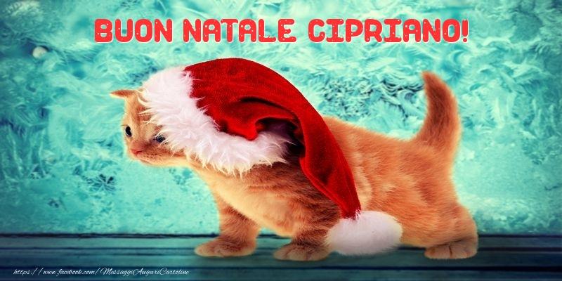 Cartoline di Natale - Buon Natale Cipriano!