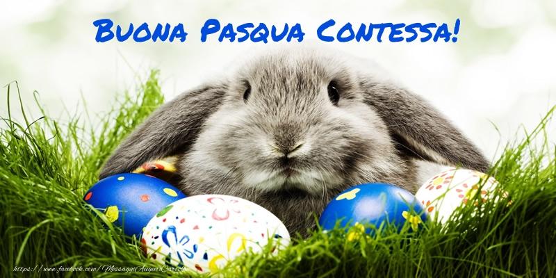 Cartoline di Pasqua - Buona Pasqua Contessa!